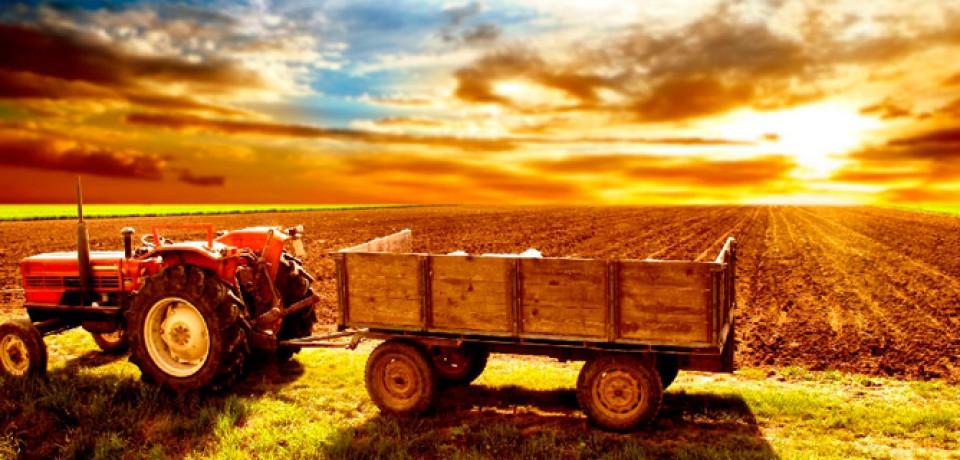 Вложения в сельское хозяйство